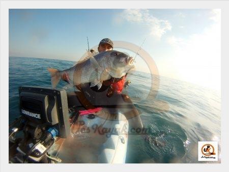 Pesca en kayak dentones