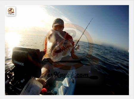 Dentón, pesca desde kayak